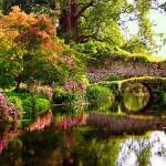 giardino di ninfa fondazione Caetani